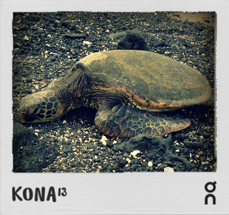 Kona Diaries Day 2